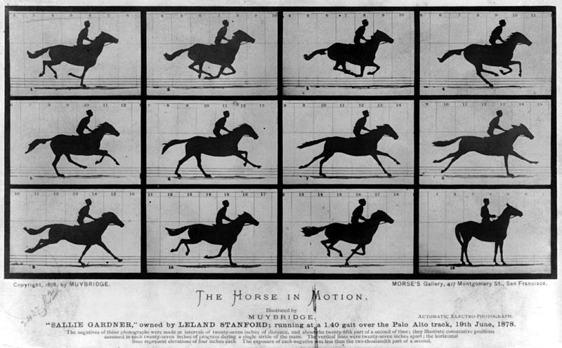 Eadweard Muybridge, The Horse in Motion. Automatic electro-photograph, 1878. Library of Congress Prints and Photographs Division via Wikimedia Commons.