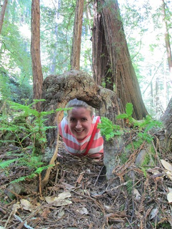 Elyse Turr in Muir Woods